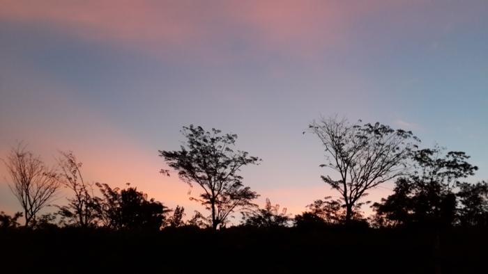 20130618_175729 dusk 1000